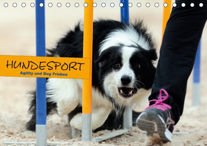 HUNDESPORT - Agility und Dog Frisbee (Tischkalender 2017 DIN A5 quer) - Coverbild