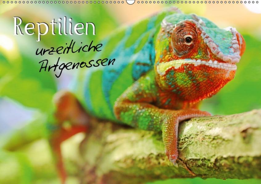 Reptilien urzeitliche Artgenossen (Wandkalender 2017 DIN A2 quer) - Coverbild