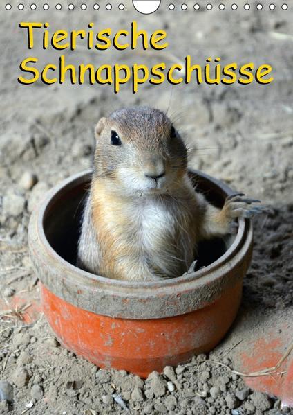 Tierische Schnappschüsse (Wandkalender 2017 DIN A4 hoch) - Coverbild
