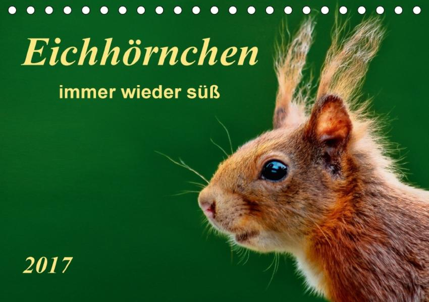 Eichhörnchen - immer wieder süß (Tischkalender 2017 DIN A5 quer) - Coverbild