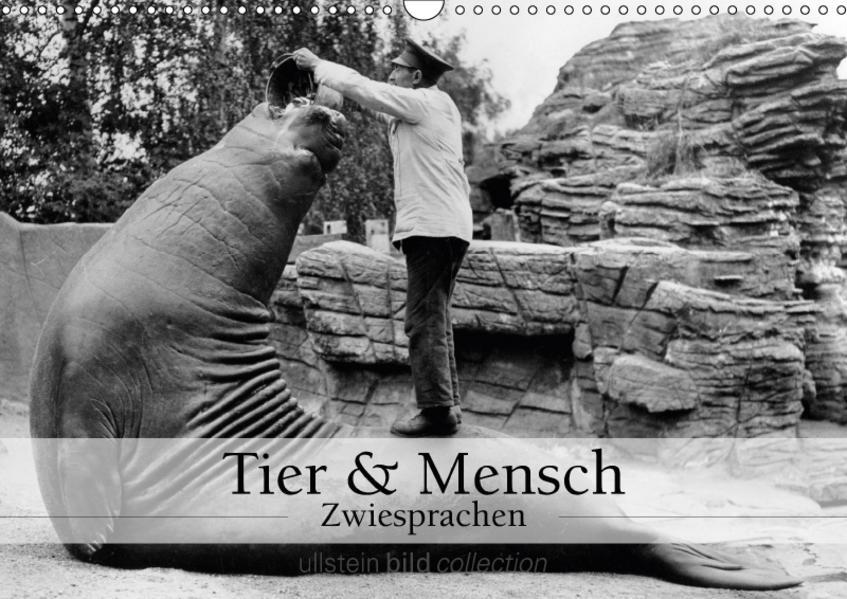 Tier und Mensch - Zwiesprachen (Wandkalender 2017 DIN A3 quer) - Coverbild