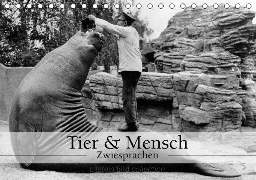 Tier und Mensch - Zwiesprachen (Tischkalender 2017 DIN A5 quer) - Coverbild