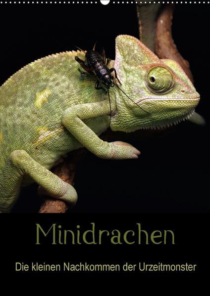 Minidrachen - Die kleinen Nachkommen der Urzeitmonster (Wandkalender 2017 DIN A2 hoch) - Coverbild