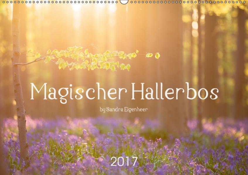 Magischer Hallerbos (Wandkalender 2017 DIN A2 quer) - Coverbild