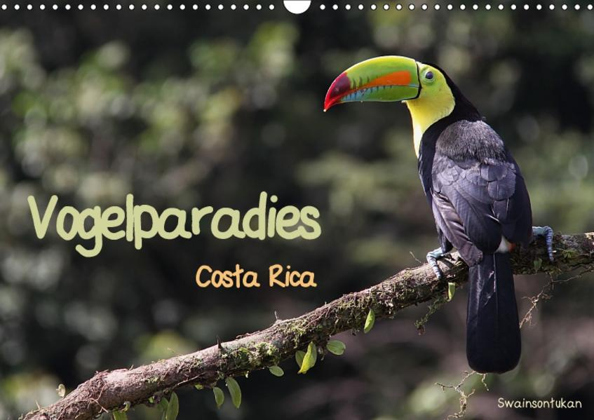 Vogelparadies Costa Rica (Wandkalender 2017 DIN A3 quer) - Coverbild