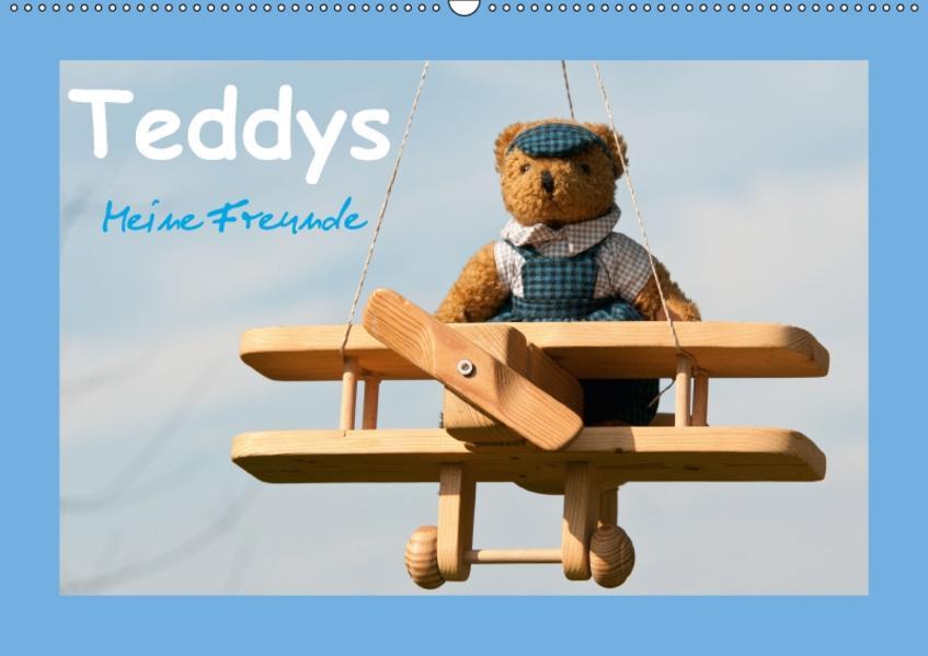 Teddys Meine Freunde (Wandkalender 2017 DIN A2 quer) - Coverbild