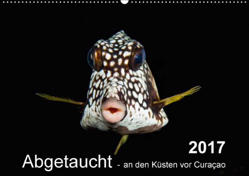 Abgetaucht - an den Küsten vor Curaçao (Wandkalender 2017 DIN A2 quer) - Coverbild