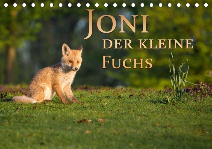 Joni, der kleine Fuchs (Tischkalender 2017 DIN A5 quer) - Coverbild