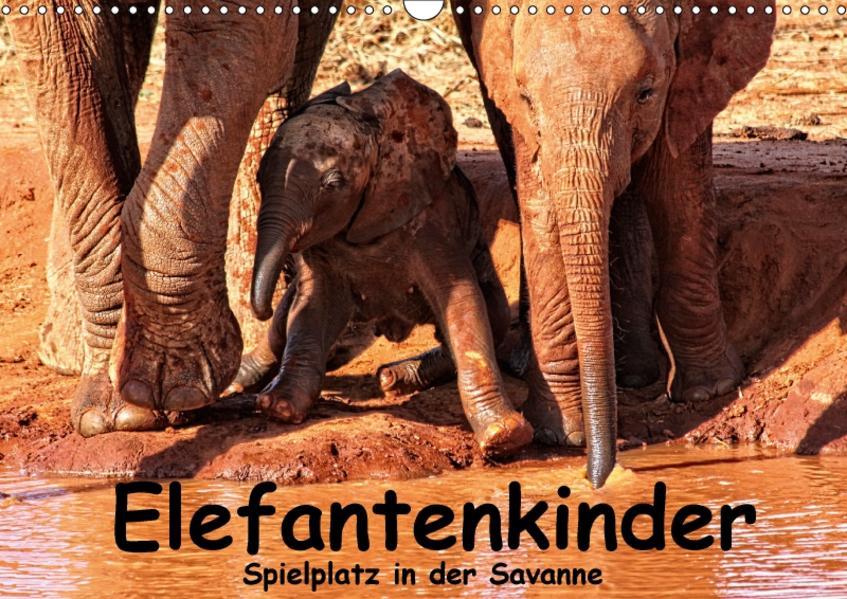 Elefantenkinder. Spielplatz Savanne (Wandkalender 2017 DIN A3 quer) - Coverbild
