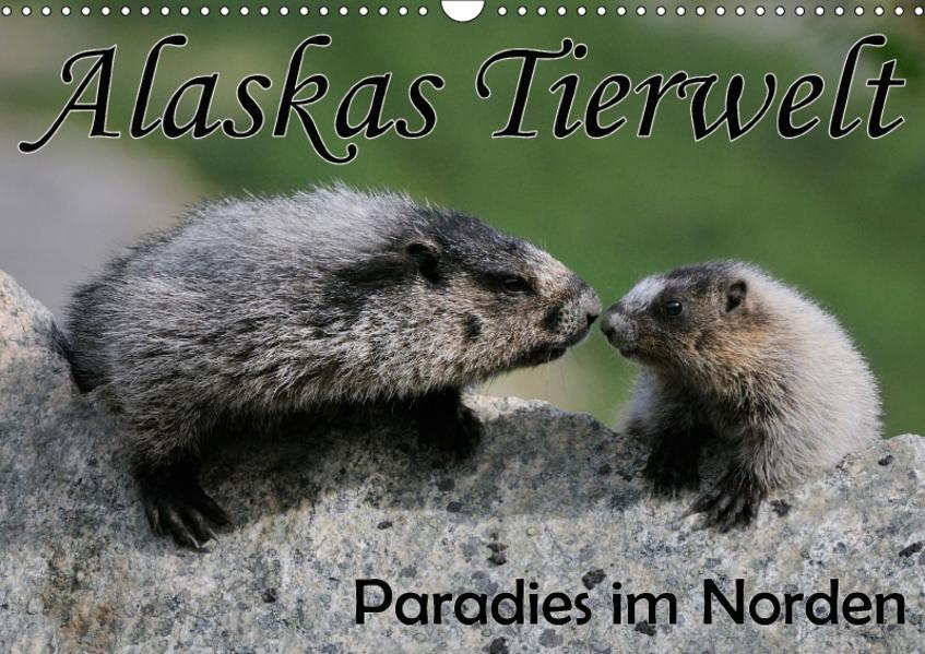 Alaskas Tierwelt - Paradies im Norden (Wandkalender 2017 DIN A3 quer) - Coverbild