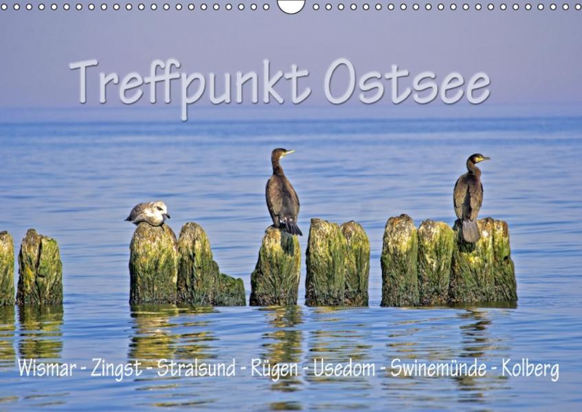 Treffpunkt Ostsee (Wandkalender 2017 DIN A3 quer) - Coverbild