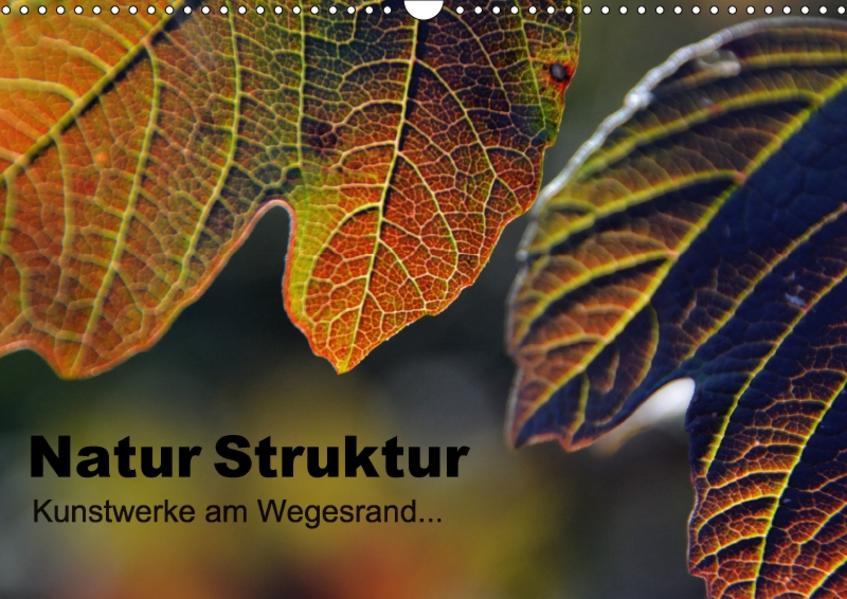 Natur Struktur - Kunstwerke am Wegesrand... (Wandkalender 2017 DIN A3 quer) - Coverbild