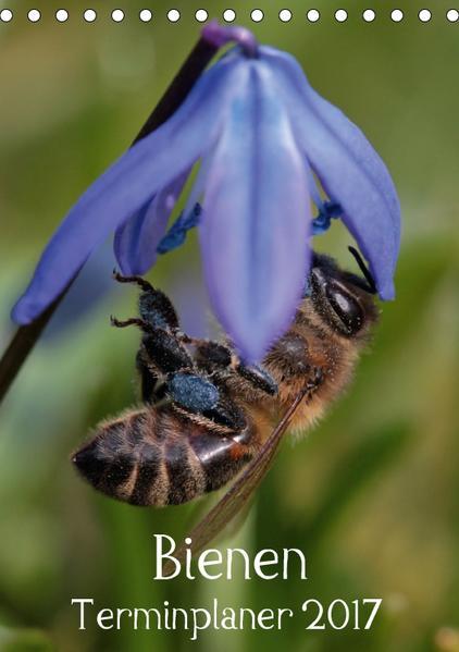 Bienen-Terminplaner 2017 (Tischkalender 2017 DIN A5 hoch) - Coverbild
