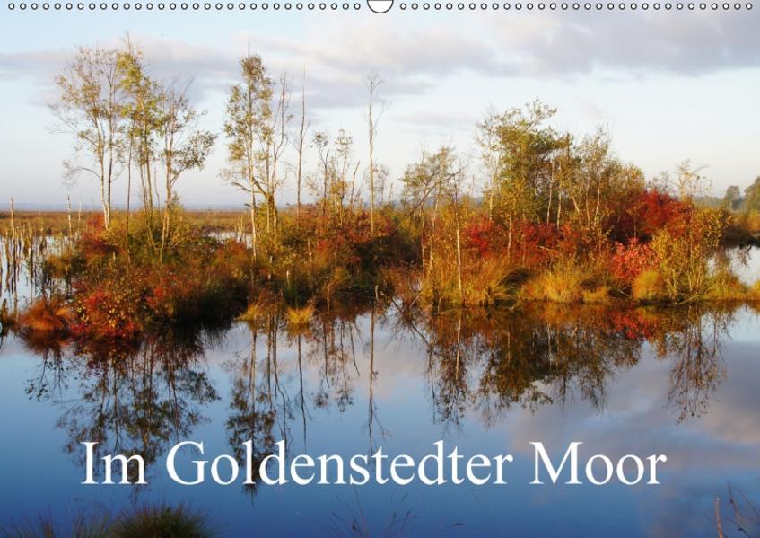 Im Goldenstedter Moor (Wandkalender 2017 DIN A2 quer) - Coverbild