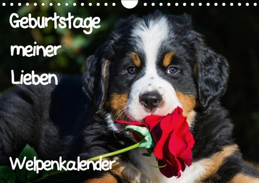 Geburtstage meiner Lieben - Welpenkalender (Wandkalender 2017 DIN A4 quer) - Coverbild
