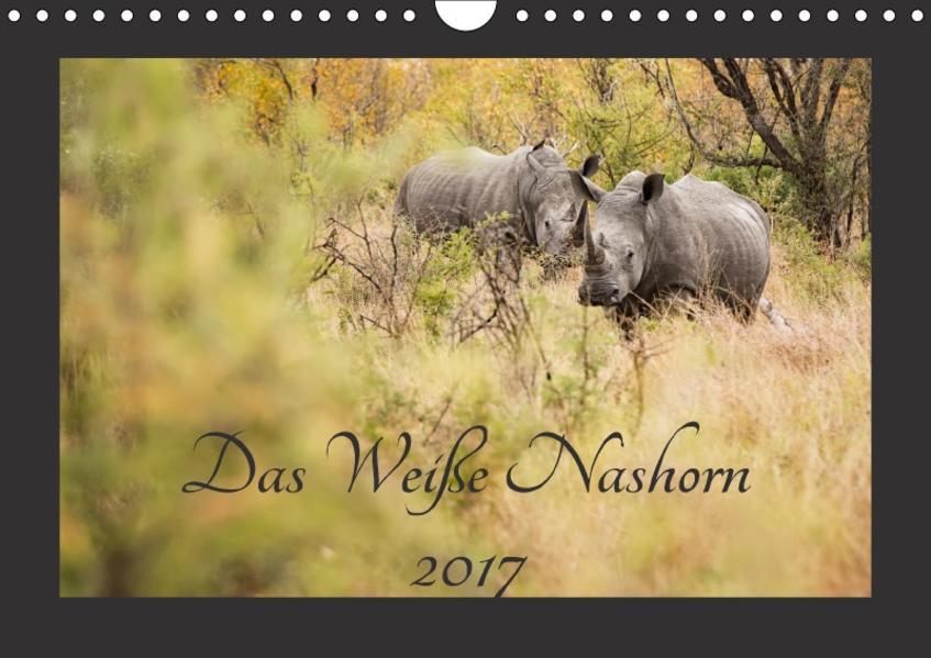 Das Weiße Nashorn (Wandkalender 2017 DIN A4 quer) - Coverbild
