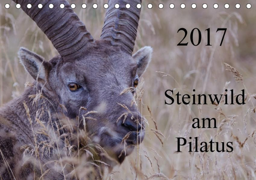 Steinwild am PilatusCH-Version  (Tischkalender 2017 DIN A5 quer) - Coverbild