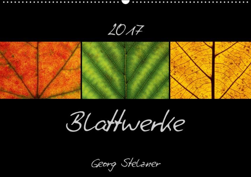 Blattwerke (Wandkalender 2017 DIN A2 quer) - Coverbild