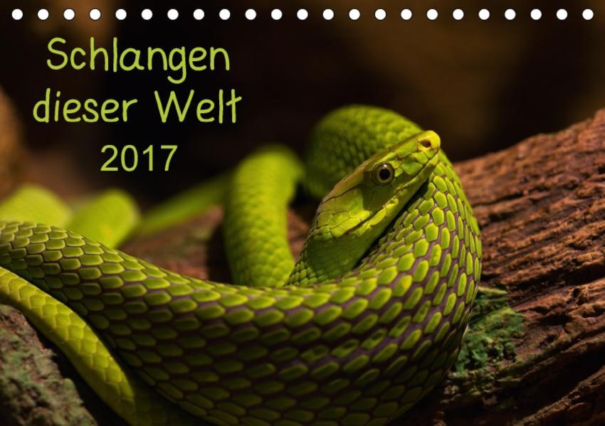 Schlangen dieser WeltAT-Version  (Tischkalender 2017 DIN A5 quer) - Coverbild