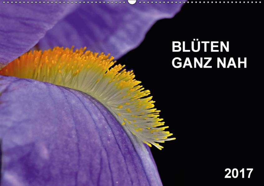 Blüten ganz nah (Wandkalender 2017 DIN A2 quer) - Coverbild