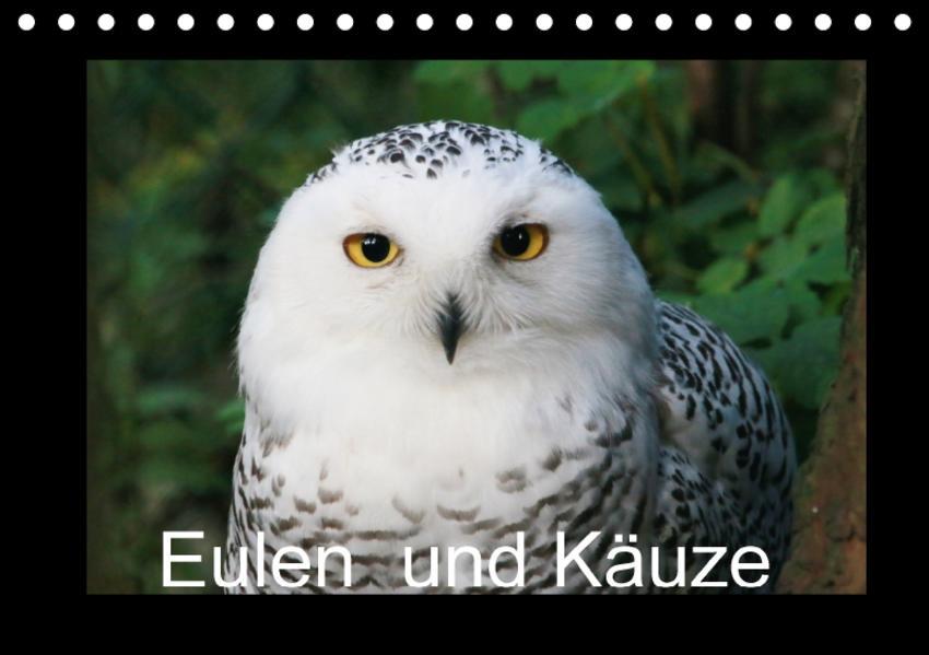 Eulen und Käuze (Tischkalender 2017 DIN A5 quer) - Coverbild
