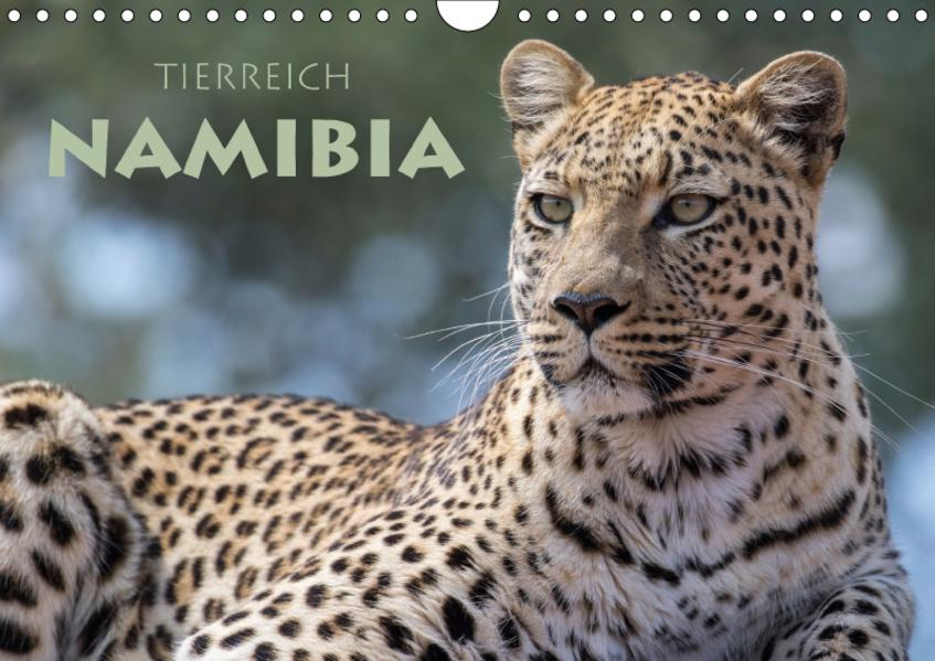 Tierreich Namibia (Wandkalender 2017 DIN A4 quer) - Coverbild