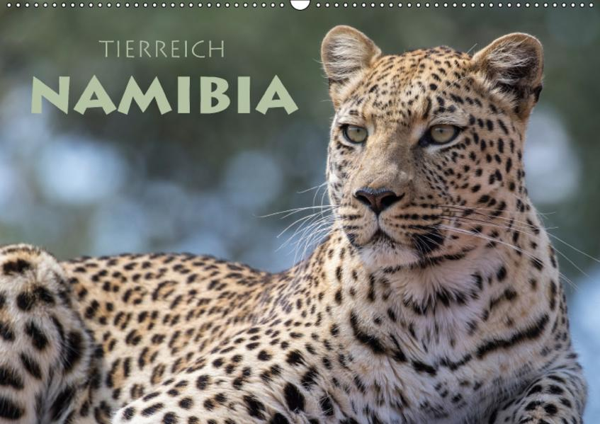 Tierreich Namibia (Wandkalender 2017 DIN A2 quer) - Coverbild
