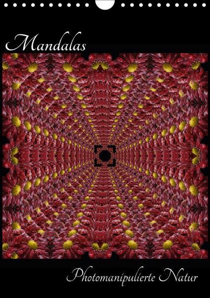 Mandalas - Photomanipulierte Natur (Wandkalender 2017 DIN A4 hoch) - Coverbild