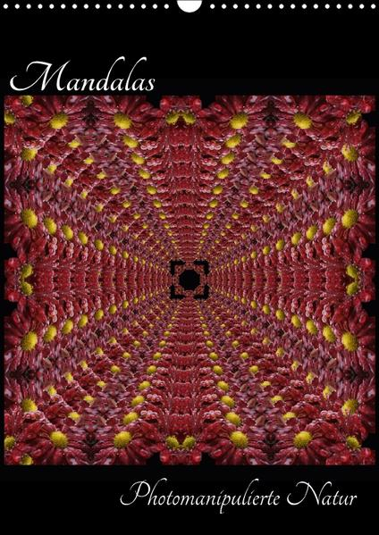 Mandalas - Photomanipulierte Natur (Wandkalender 2017 DIN A3 hoch) - Coverbild