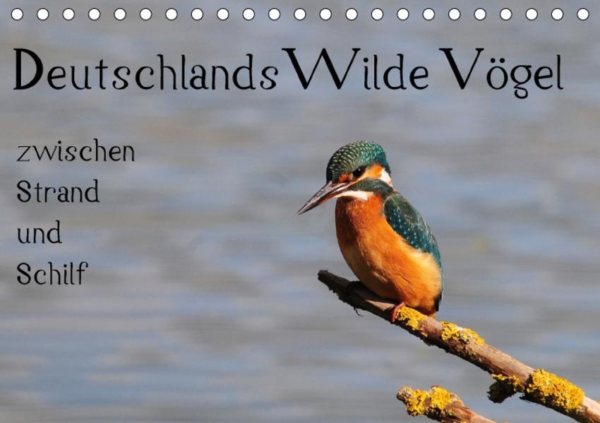 Deutschlands wilde Vögel zwischen Strand und Schilf (Tischkalender 2017 DIN A5 quer) - Coverbild