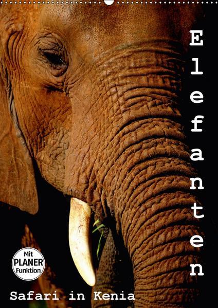 Elefanten. Safari in Kenia (Wandkalender 2017 DIN A2 hoch) - Coverbild
