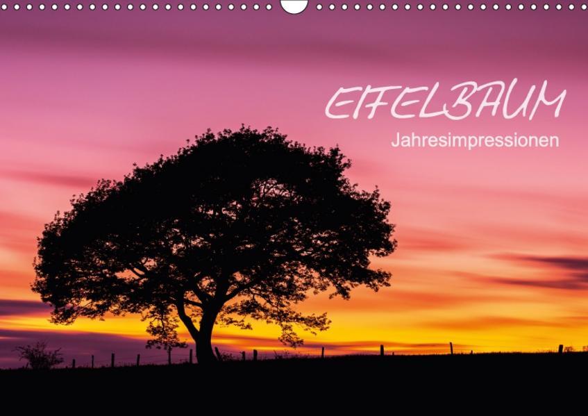 Eifelbaum - Jahresimpressionen (Wandkalender 2017 DIN A3 quer) - Coverbild