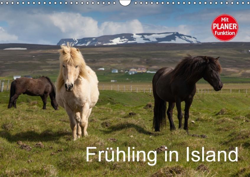 Frühling in Island (Wandkalender 2017 DIN A3 quer) - Coverbild