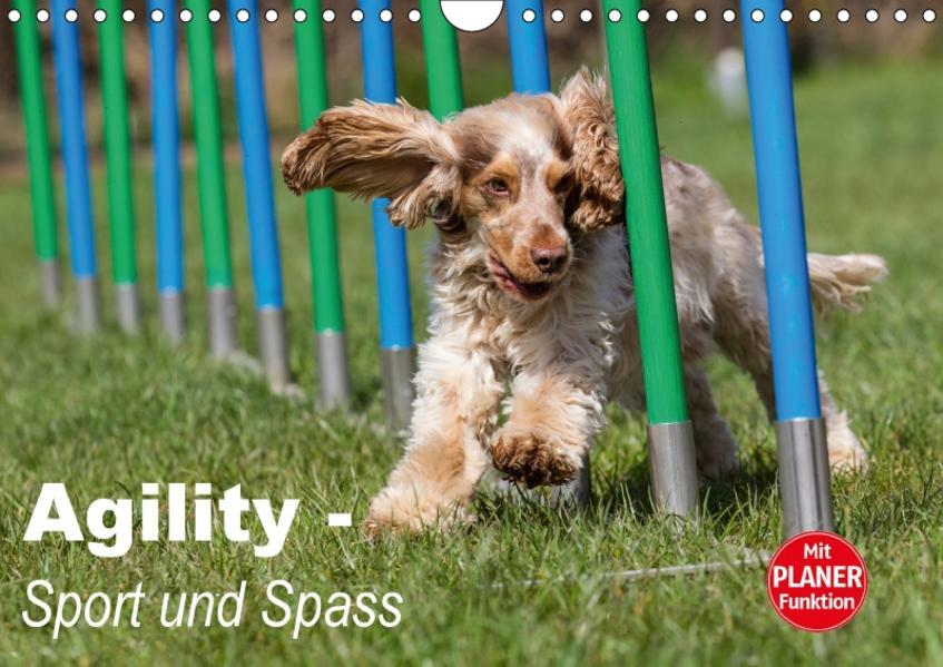 Agility - Sport und Spass (Wandkalender 2017 DIN A4 quer) - Coverbild