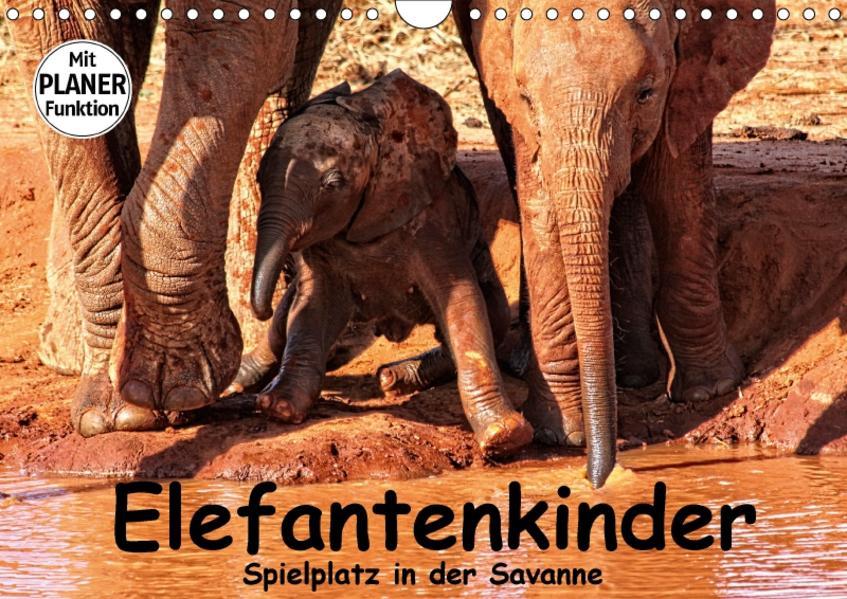 Elefantenkinder. Spielplatz in der Savanne (Wandkalender 2017 DIN A4 quer) - Coverbild