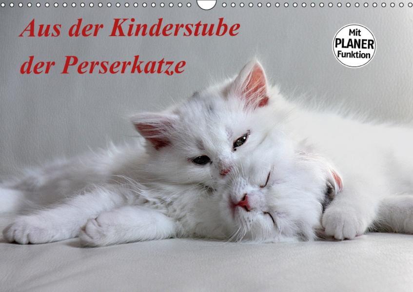 Aus der Kinderstube der Perserkatze (Wandkalender 2017 DIN A3 quer) - Coverbild