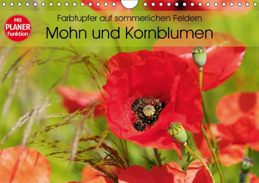 Farbtupfer auf sommerlichen Feldern - Mohn und Kornblumen (Wandkalender 2017 DIN A4 quer) - Coverbild