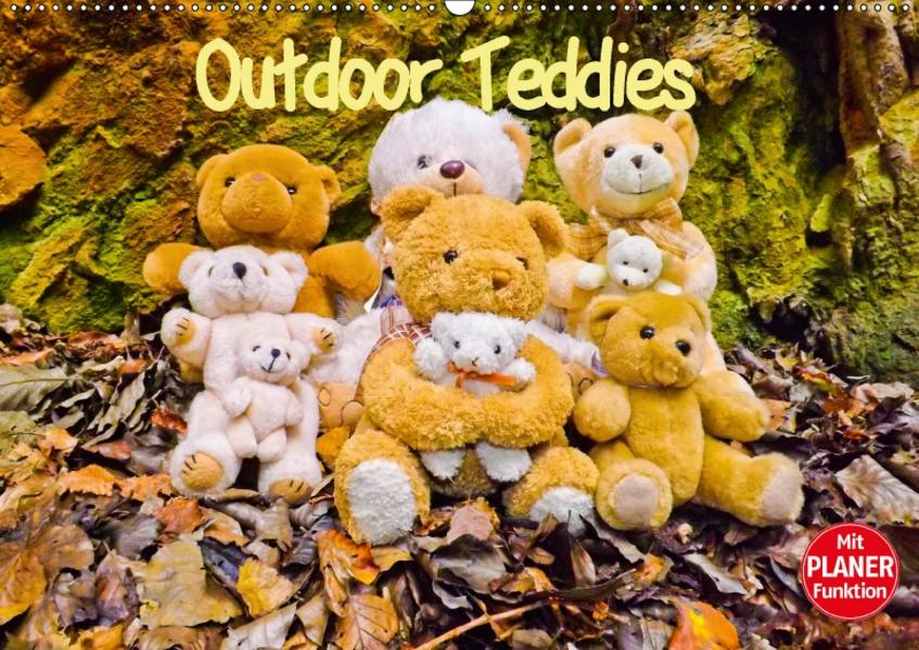 Outdoor Teddies (Wandkalender 2017 DIN A2 quer) - Coverbild