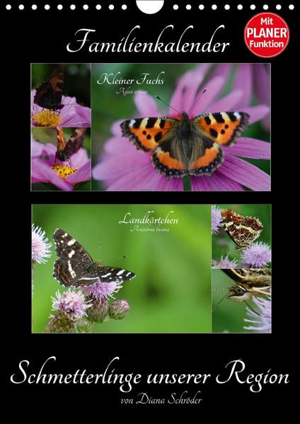 Schmetterlinge unserer Region  Familienkalender (Wandkalender 2017 DIN A4 hoch) - Coverbild