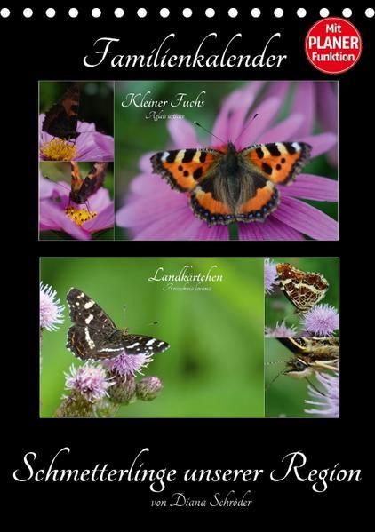 Schmetterlinge unserer Region  Familienkalender (Tischkalender 2017 DIN A5 hoch) - Coverbild