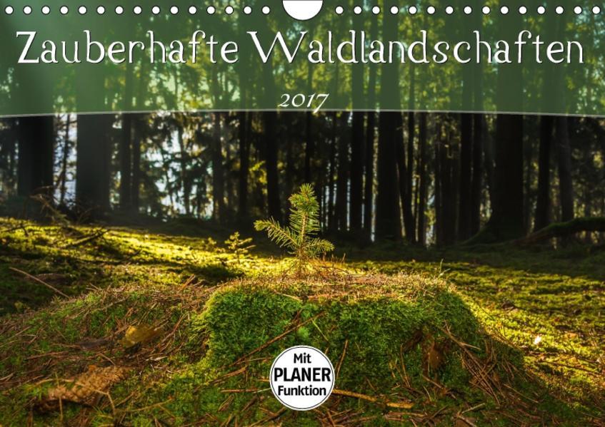 Zauberhafte Waldlandschaften (Wandkalender 2017 DIN A4 quer) - Coverbild