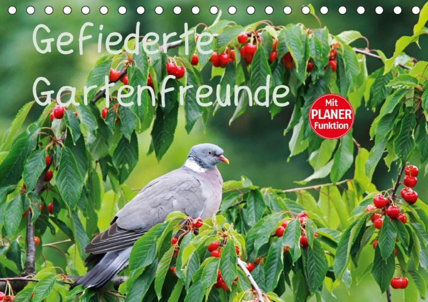 Gefiederte Gartenfreunde (Tischkalender 2017 DIN A5 quer) - Coverbild