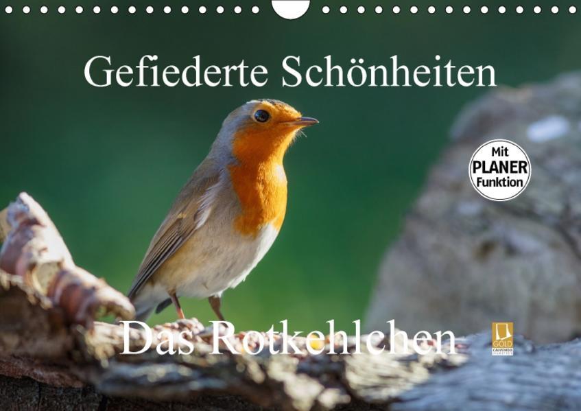 Gefiederte Schönheiten - Das Rotkehlchen / Planer (Wandkalender 2017 DIN A4 quer) - Coverbild
