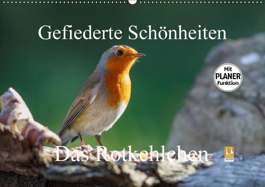 Gefiederte Schönheiten - Das Rotkehlchen / Planer (Wandkalender 2017 DIN A2 quer) - Coverbild
