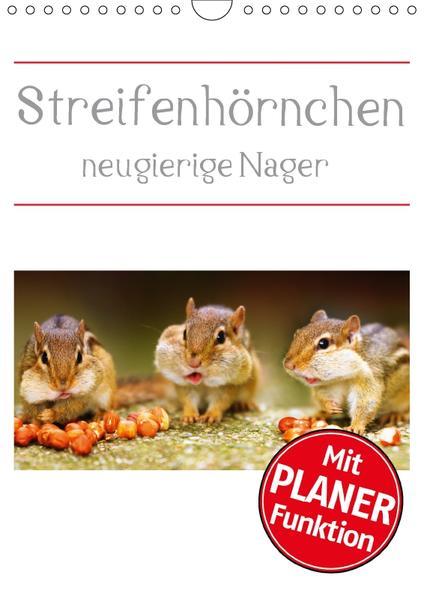 Streifenhörnchen - neugierige Nager (Wandkalender 2017 DIN A4 hoch) - Coverbild