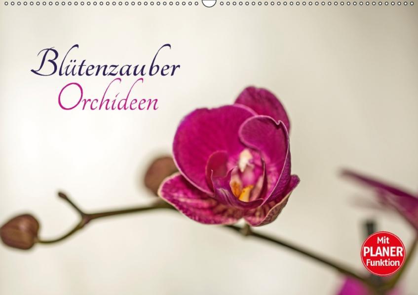 Blütenzauber Orchideen (Wandkalender 2017 DIN A2 quer) - Coverbild