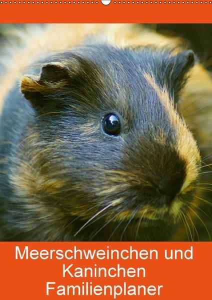 Meerschweinchen und Kaninchen Familienplaner (Wandkalender 2017 DIN A2 hoch) - Coverbild