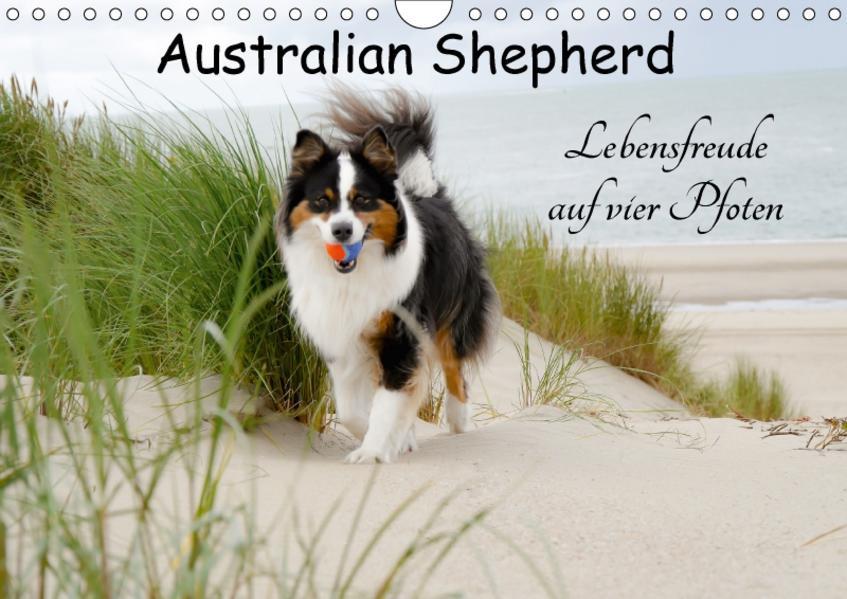 Australian Shepherd - Lebensfreude auf vier Pfoten (Wandkalender 2017 DIN A4 quer) - Coverbild