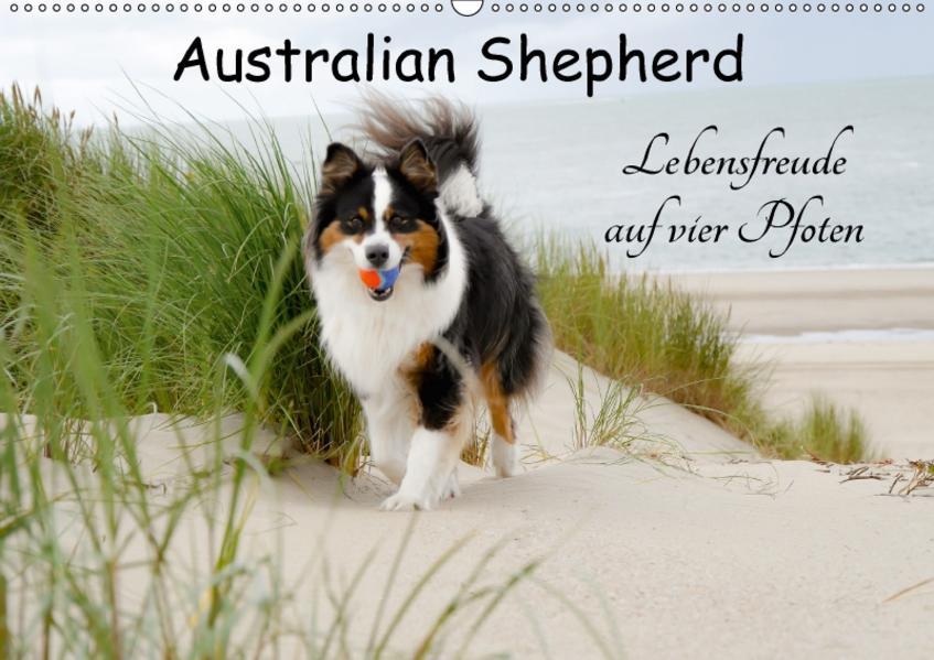 Australian Shepherd - Lebensfreude auf vier Pfoten (Wandkalender 2017 DIN A2 quer) - Coverbild