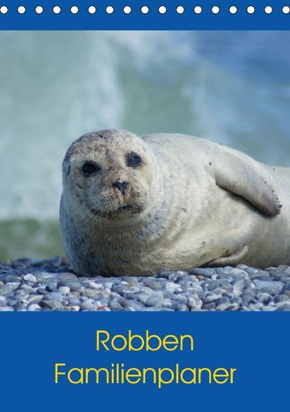 Robben Familienplaner (Tischkalender 2017 DIN A5 hoch) - Coverbild